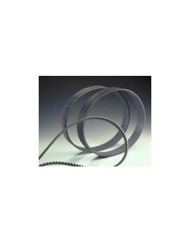 COURROIE 1250-H Longueur primitive 3175.00mm