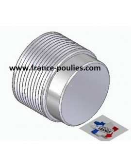 POULIE POLY-V ALU Øext50 PJ 10 DENTS